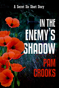 In the Enemy's Shadow