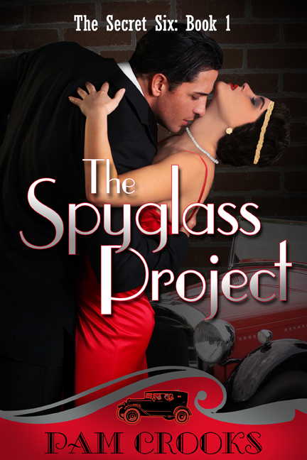 The Spyglass Project, Secret Six series Book 1